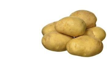 Maincrop Potatoes